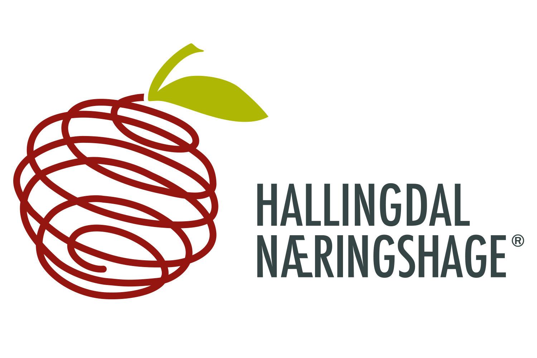 Hallingdal Næringshage AS's logo.